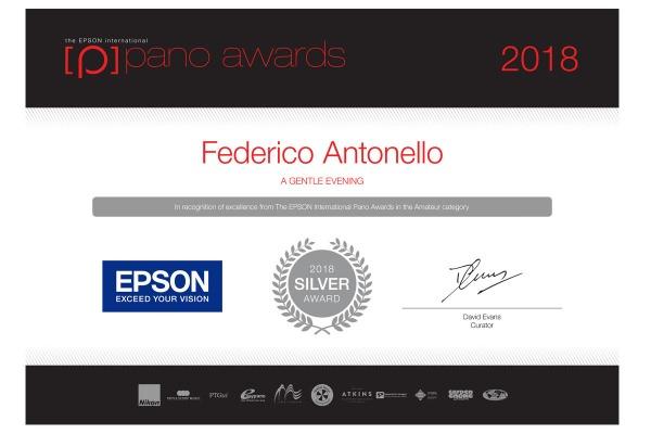 epsonsilver_Federico Antonello 2